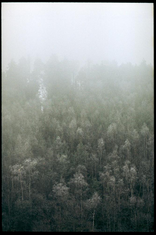 film-453_07w