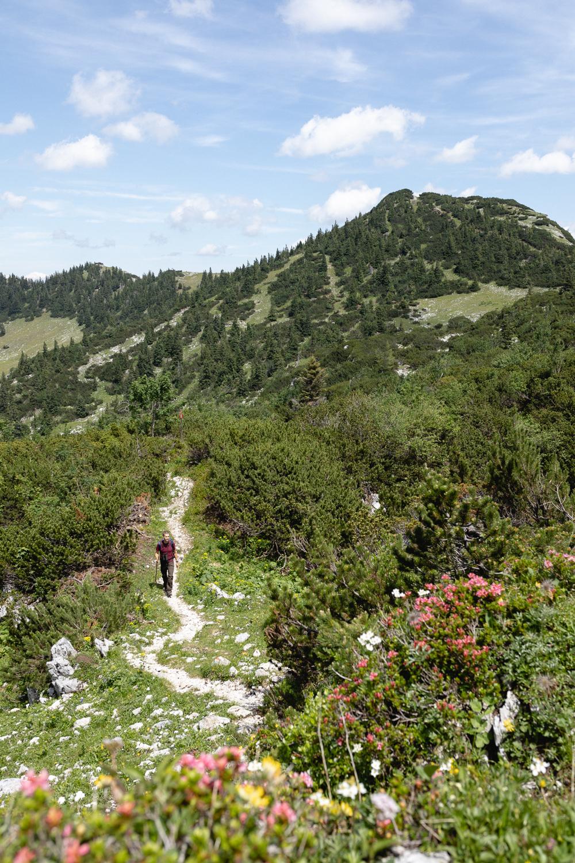 SuchergebnisseWebergebnis mit SitelinksLuchs Trail