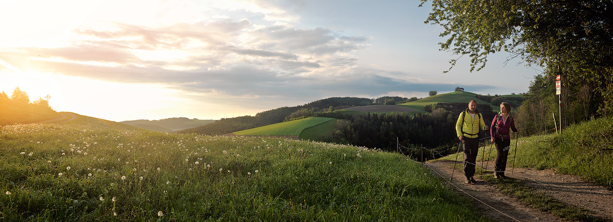 wa_V_02.3-FLorian-Lierzer-Landscape-Niederoesterreich-Werbung-2